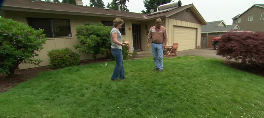 Lepo urejen travnik okrog hiše